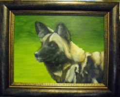 African Wild dog Framed by FireWolfWitch