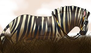 Western Bridle Zebra by dyb