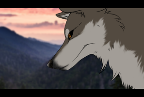 Test wolf by Frodse
