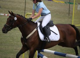 STOCK Showjumping 480 by aussiegal7