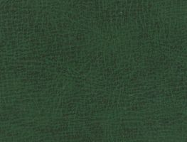 Green leather texture by AnnFrost-stock