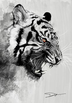 Tiger - {Help me to VOTE my design!] by dIk-ThePrince