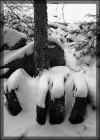 Snowy Hand by moeuf