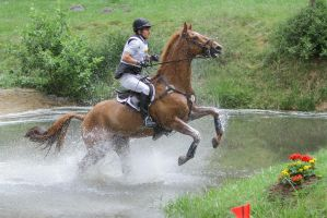 3DE Cross Country Water Obstacle Series XV/3 by LuDa-Stock