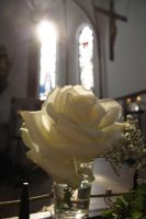 Rose, cross and light by lobidu