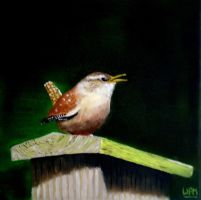 Wren by WendyMitchell