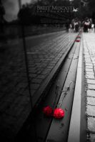Flowers for the Fallen I by brittmiscast