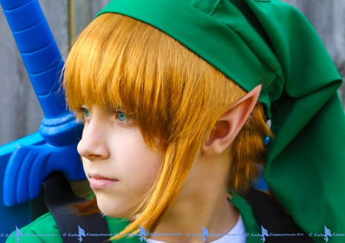 Link: Keep an eye and a pointed ear out for Ganon. by Kaida-Kitsune