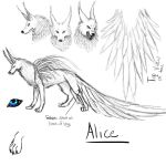 Alice Reference by Deathdragon0593