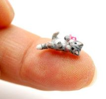 TINY OOAK FURRY KITTEN CAT by WEE-OOAK-MINIATURES