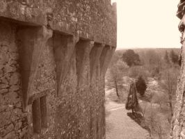 blarney castle by csclements