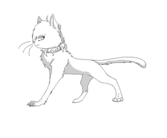 BloodClan Cat Template by LineartsForAll