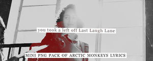 Arctic Monkeys PNGS by pandaisia