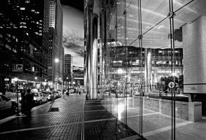 Chicago HDR 2009 BW by delobbo