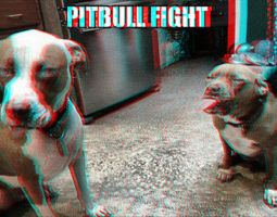 Pitbull Fight 3-D conversion by MVRamsey