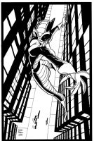 Catwoman On The Loose by tygertailzz