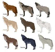 Semi-natural wolf adoptables - OPEN by ForeignFrontierRanch