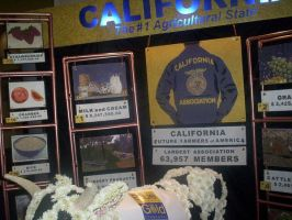 California FFA by ComaGirl16