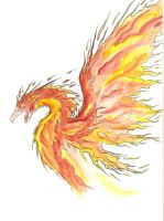 Phoenix in Watercolor by reizezdewickid