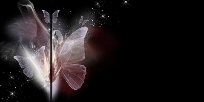Butterfly Background by VaLeNtInE-DeViAnT