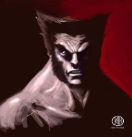 Logan quickie by Marvelfans