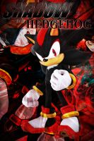 Shadow The Hedgehog iPod Wallpaper! by xRandomGurl