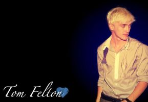 Tom Felton Wallpaper by emmyxogats