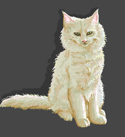 Norwegian Forest Cat: MS PAINT by Aroruusu