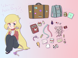 whats in ash's bag? by asheds