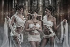 Trois Soeurs Aveugles by MD-Arts