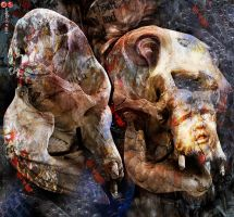 Bones of Time by cloistering