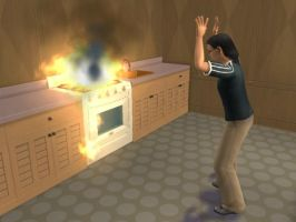 How not to cook hamburgers by goddessmoonsoul