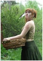 Basket I by Eirian-stock