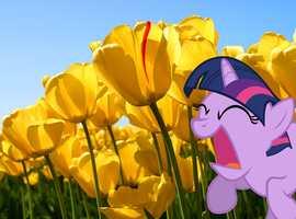 Twilight Sparkle wallpaper - frolicking(?) by nestordc