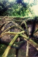 -Ruines- 04 ARCHES by Taikgwendo