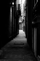 alley by ilovenatural