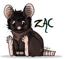 Gift - Zac by Rattus-Shannica