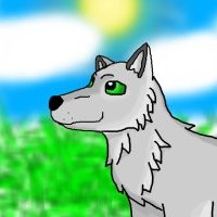 Day Wolf by icewormie