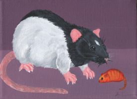 Hooded Rat and Friend by wolfysilver