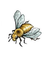 Bee Tattoo 1 :color: by Smocksinabox