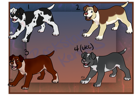 American PitBull Terrier Imports Open One Left by WinchesterCrossroads