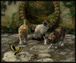 Cats by LillithI