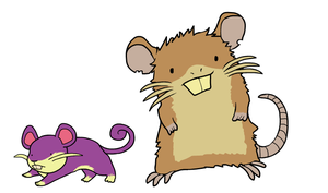 Ratatta and Raticate by HappyCrumble