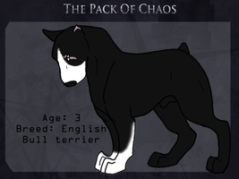 Pike-Chaos Mutts by lurking-chaos