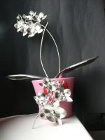 Silver orchid in pots by irineja