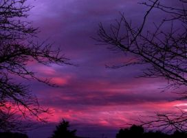 purple sky 02 by glad2626