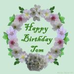 Happy Birthday Tom! by Shirley-Agnew-Art