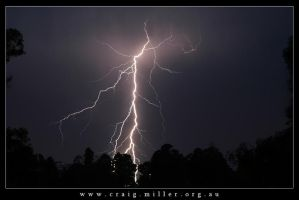 Lightning by Craig-Miller