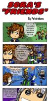 "KH: Sora's ""Friends"" by Potatobuns"