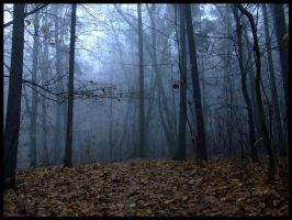 The Fog - a forest by Necrotrup